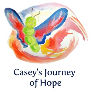 Canada-Book-Awards-Winner-Arden-McGregor-Meghan-Irvine-Caseys-Journey-of-Hope