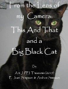 https://canadabookawards.files.wordpress.com/2020/07/canada-book-awards-winner-e-jean-simpson-from-the-lens-of-my-camera-this-and-that-and-a-big-black-cat-1.jpg