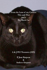 https://books2read.com/This-and-That-and-a-Big-Black-Cat